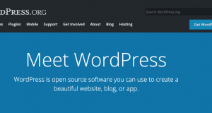 Wordpress - MyStartupLand